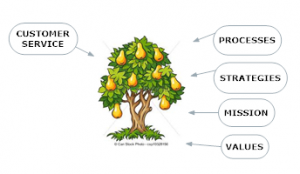 Fruit tree - empowered org